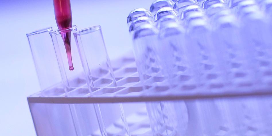 El avance de la medicina biorreguladora en Chile