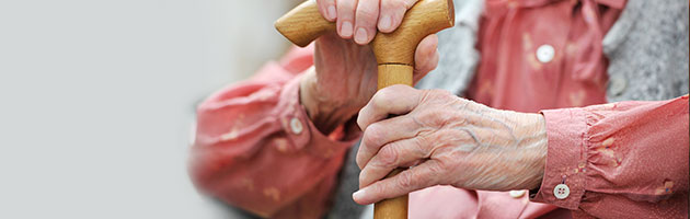proceso biologico del envejecimineto