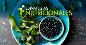 Estrategias Nutricionales Maqui Antioxidantes