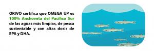 100% Anchoveta del Pacífico Sur