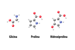 Aminoácidos Clave Glicina Prolina Hidroxiprolina