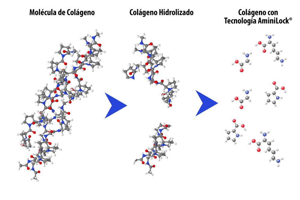 Colágeno Hidrolizado