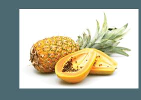 Bromelina (Piña) y Papaína (Papaya)
