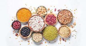 porotos alimentos probióticos