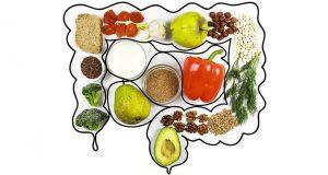 Bienestar Microbiota Intestinal